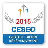 badge-ceseo-2015
