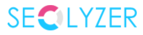 Seolyzer Logo